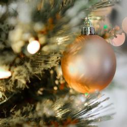 Plateau repas de Noël